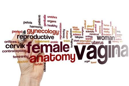 videos words vagina